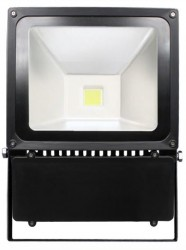 Heathfield LED Floodlight, 100W, Cool White 6000K, IP65