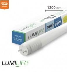 LumiLife LED Tube 1200mm (4ft), 18W, T8, EMag/Mains