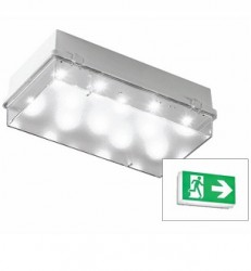 Cooper Zetalite 3, LED Emergency Bulkhead, 3W, IP65