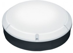 ThornEco LARA 250 IP65 Bulkhead, Black Body, Microwave, 96666110